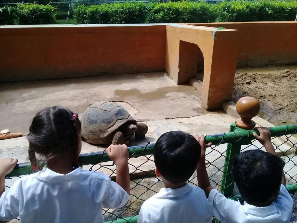 Kindergarten outing 3