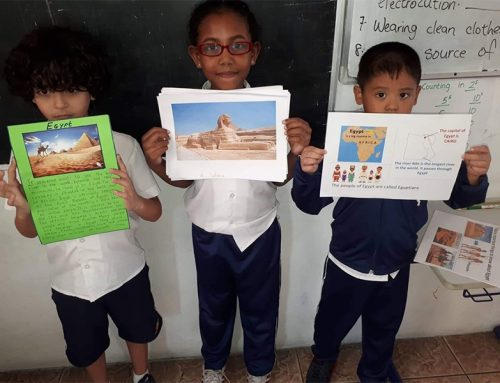 Primary students' class presentation